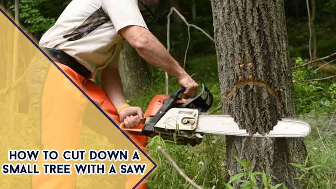 how to cut down a small tree with a saw